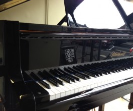Bluthner Model 11 Baby Grand Piano