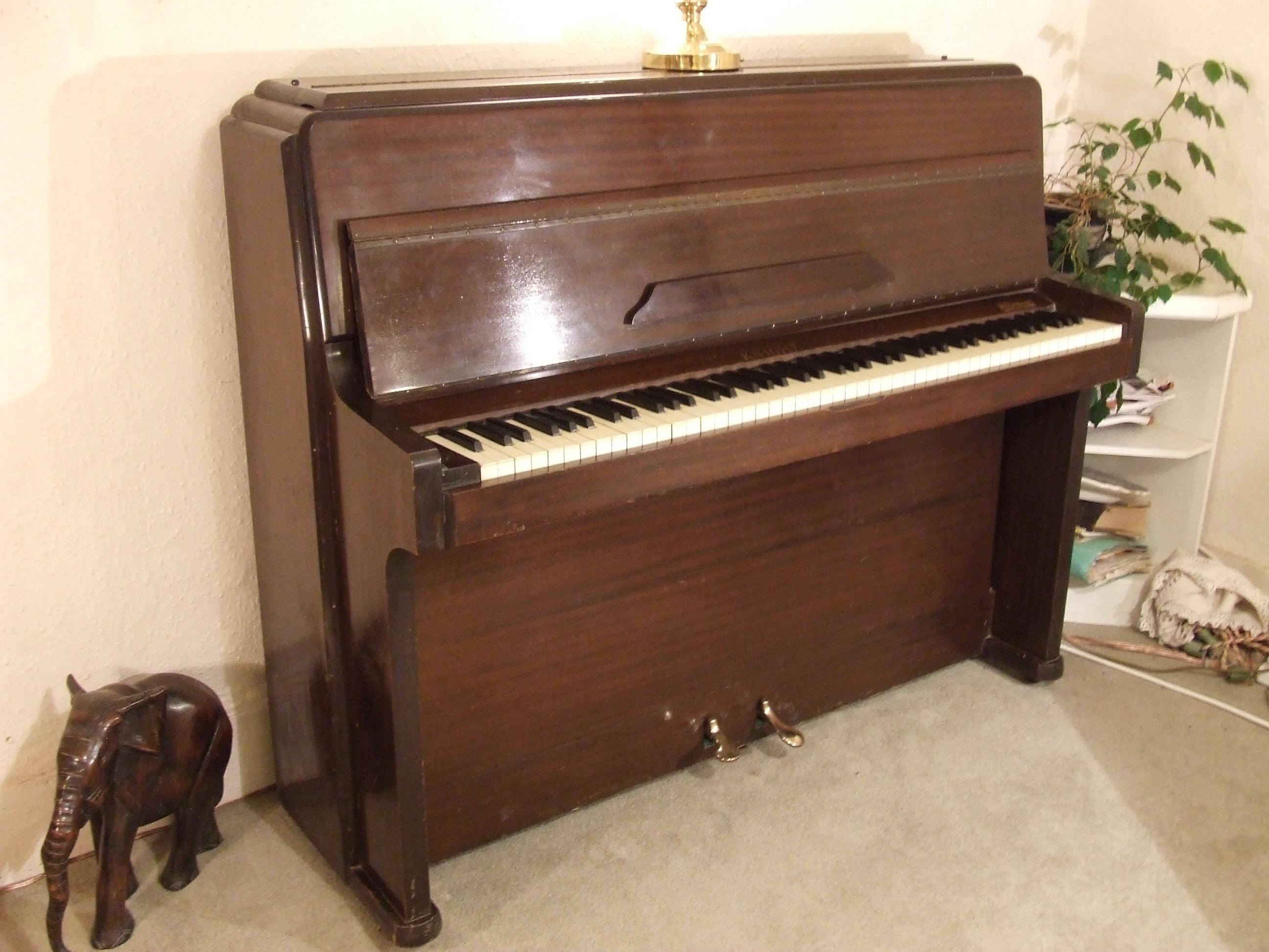 Piano-Knight-K10