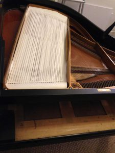 Bass String Rubbing on a Grotrian Steinweg Grand Piano | The Piano Shop Bath