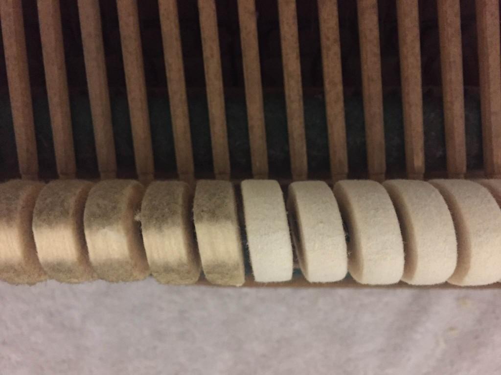 Refaced hammers on restored Bluthner Grand
