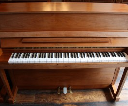 Wilh. Steinberg IQ16 upright piano