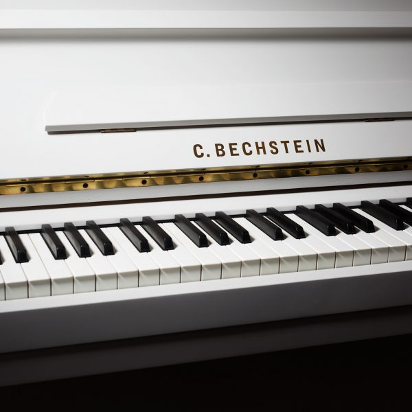 Bechstein Painted Piano