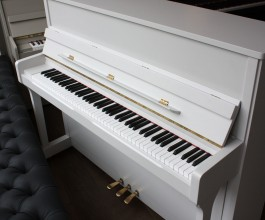 Wilh Steinberg IQ16 painted piano