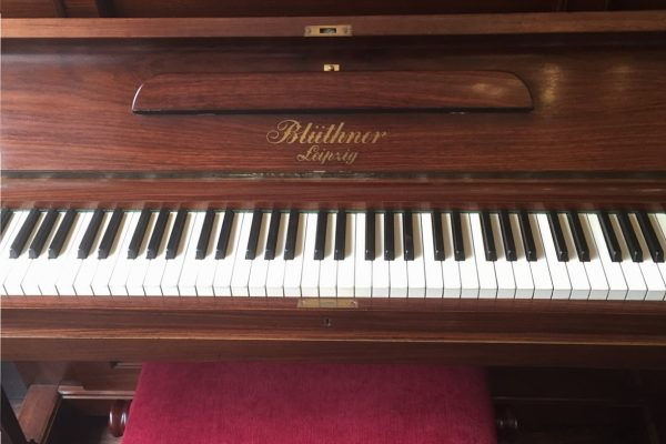 Blüthner Grand Pianov