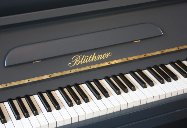 Bluthner Railings Painted Piano